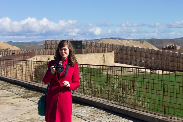 Logroño wineries